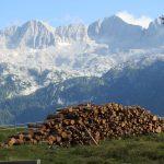 Vivere il Friuli: la montagna d'estate e d'inverno